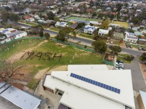 Castlemaine North Primary School Rallies Around Solar
